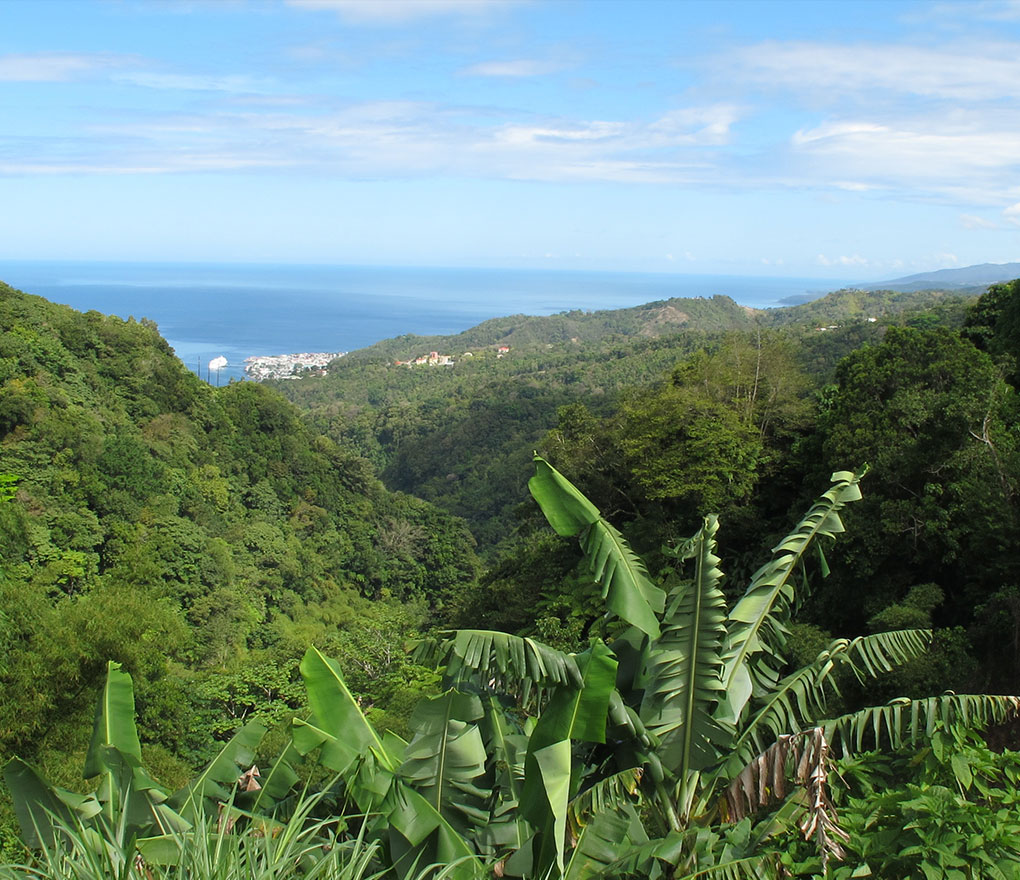 island-of-dominica-and-the-waitukubuli-national-trail-secret-world