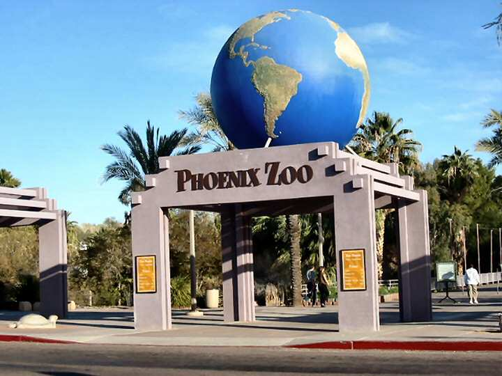 over-1300-animals-call-the-phoenix-zoo-home-including-2-secret-world