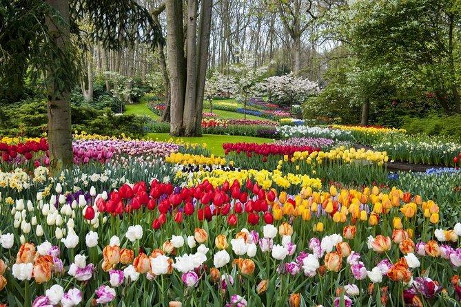 keukenhof-le-plus-grand-jardin-de-fleurs-du-monde-secret-world