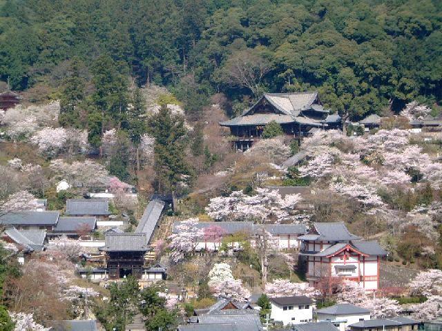 hasedera-temple-in-nagano-shi-secret-world