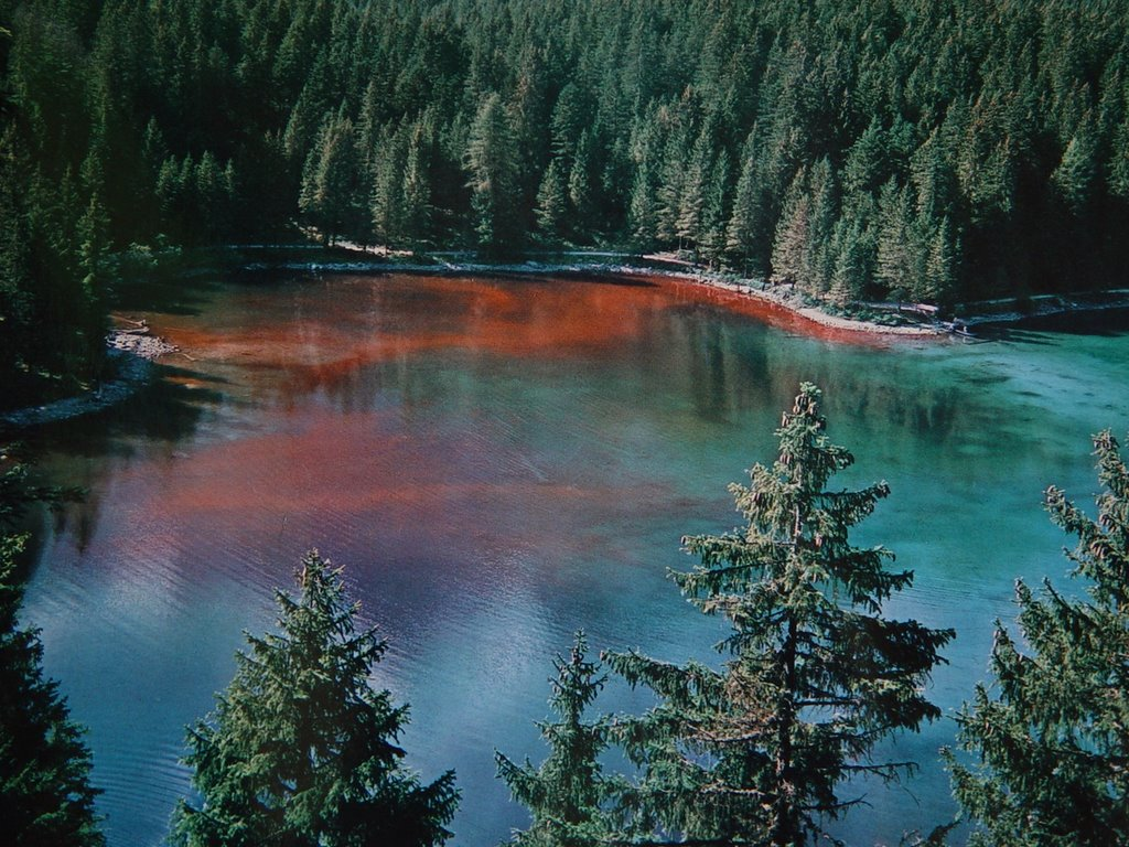lago-di-tovel-secret-world
