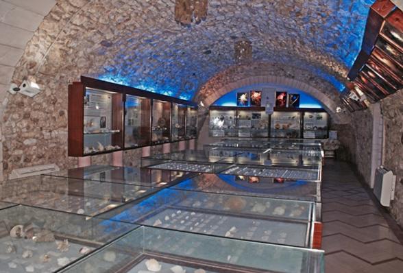 Museo malacologico