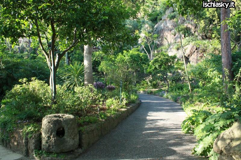 Ischia e i giardini La mortella