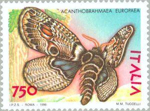 la-bramea-del-vulture-una-farfalla-unic-secret-world