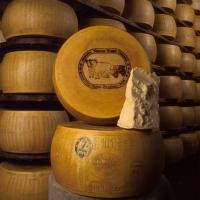 Parmigiano reggiano Vacche rosse... - Secret World