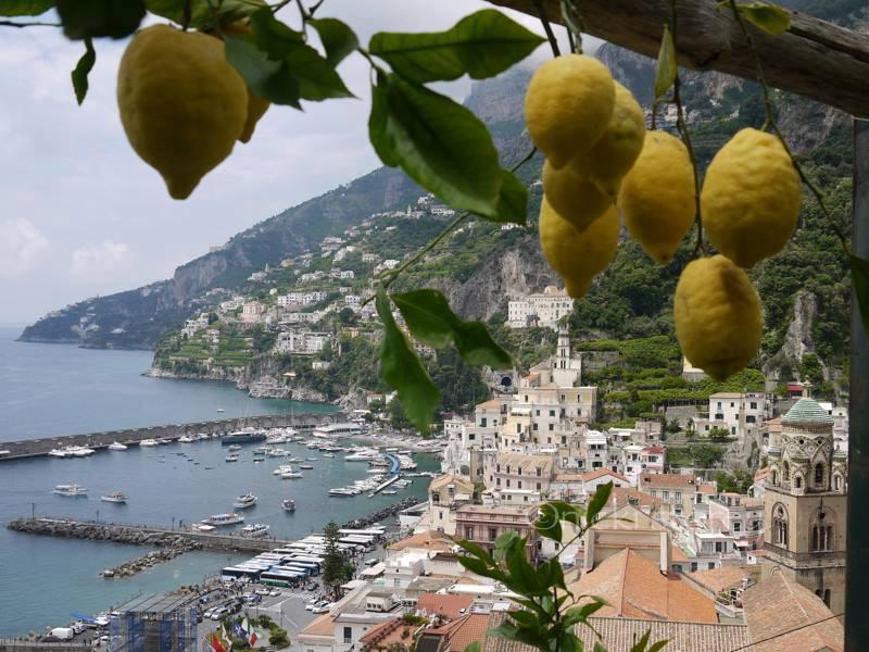 limone-di-amalfi-secret-world