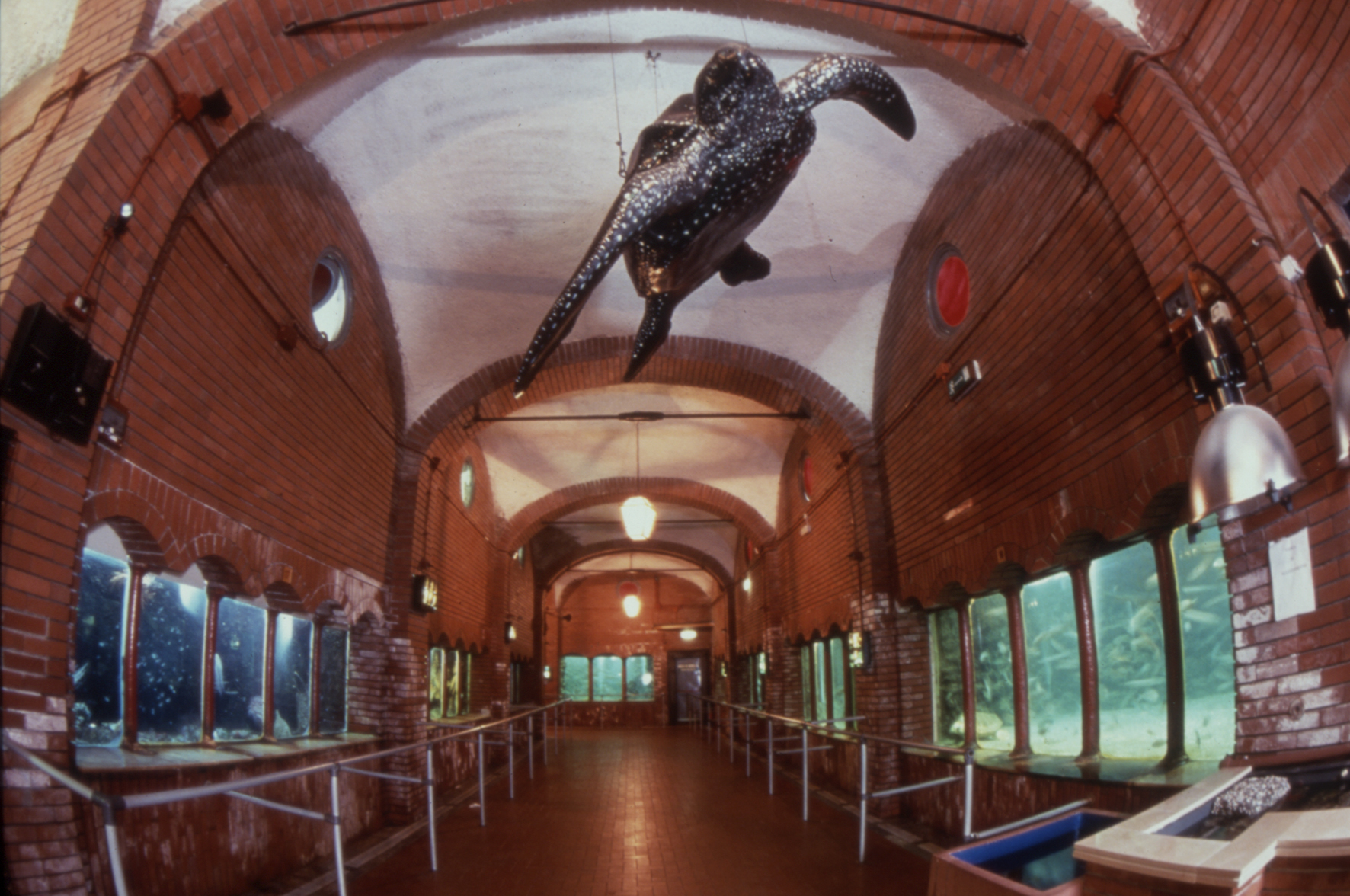 stazione-zoologica-anton-dohrn-di-napoli-secret-world