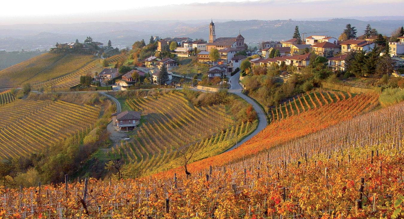 top-wines-od-the-world-barbaresco