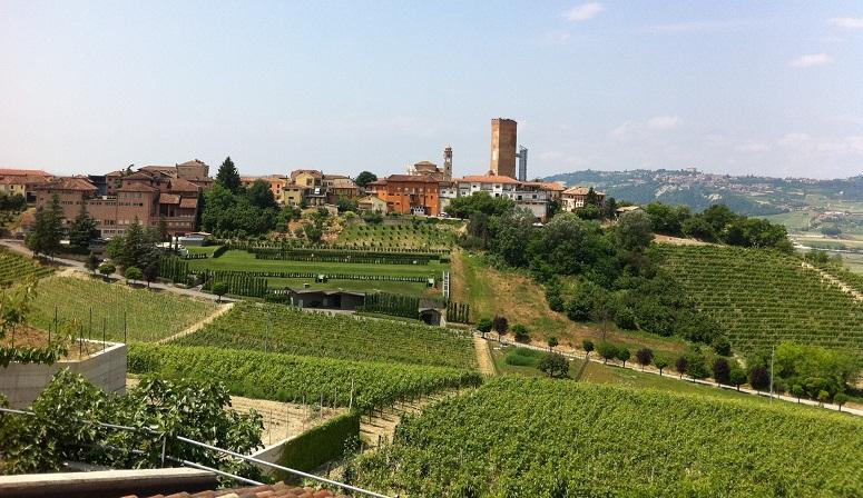 Top Wines od The World: Barbaresco