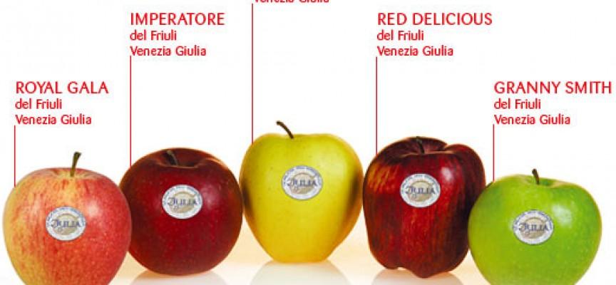 Mela del Friuli Venezia Giulia DOP