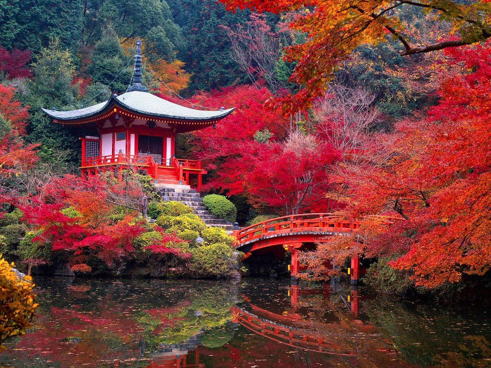 kyoto-the-garden-and-the-saihoji-temple-secret-world