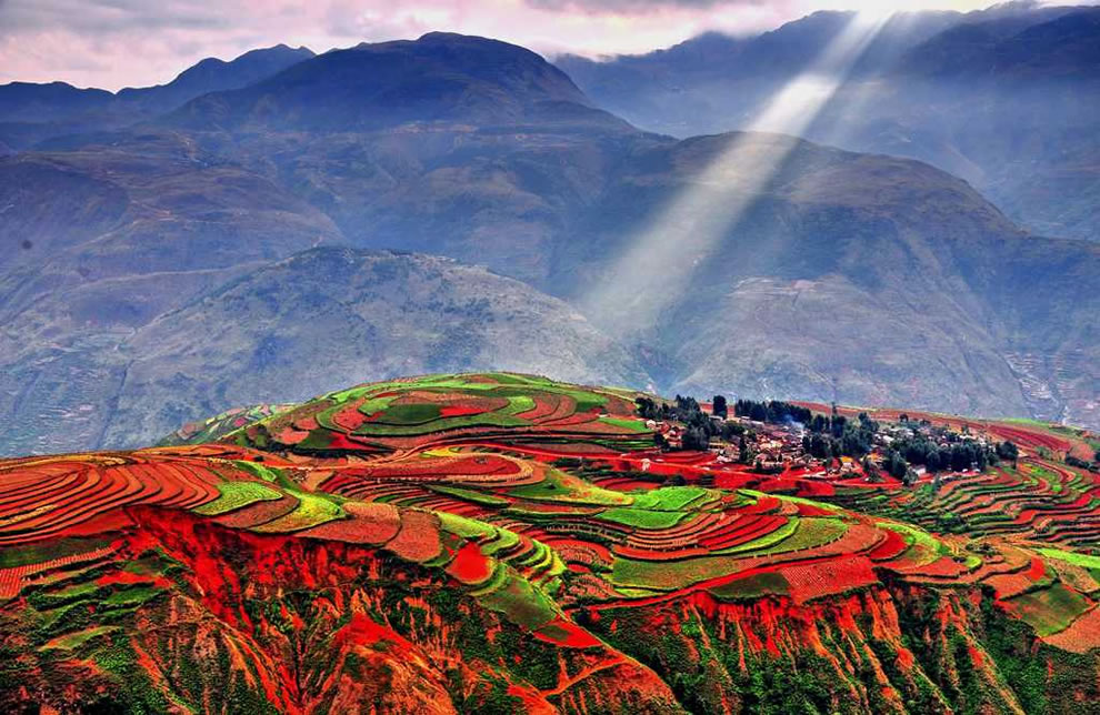 rice-field-terraces-secret-world