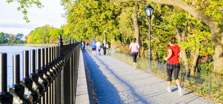 pathway-central-park-manhattan-secret-world