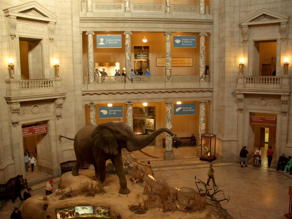 smithsonian-national-museum-of-natural-his-secret-world