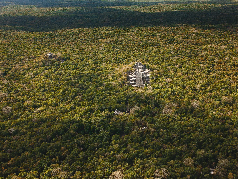 calakmul-is-a-mayan-site-hidden-in-the-jun-secret-world