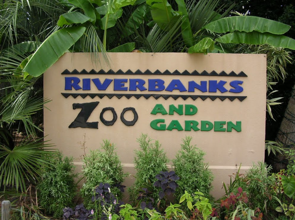 one-of-americas-best-zoos-riverbanks-zoo-and-garden-is-secret-world