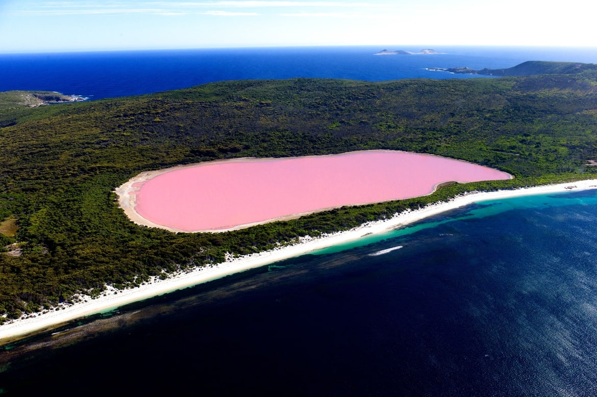 lake-hillier-and-the-pink-mistery-austra-secret-world