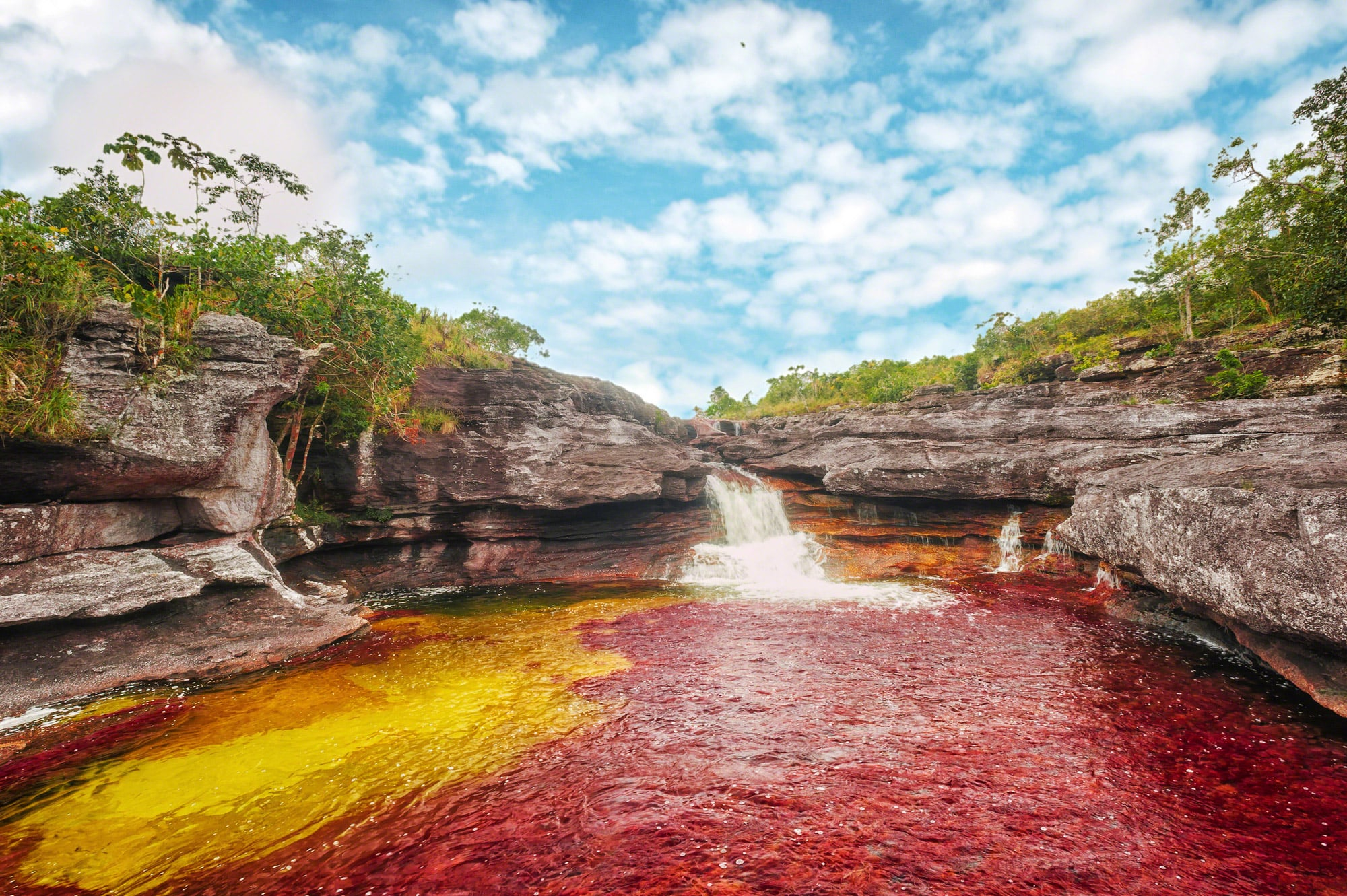 cano-cristales-river-and-its-wonderful-col-secret-world