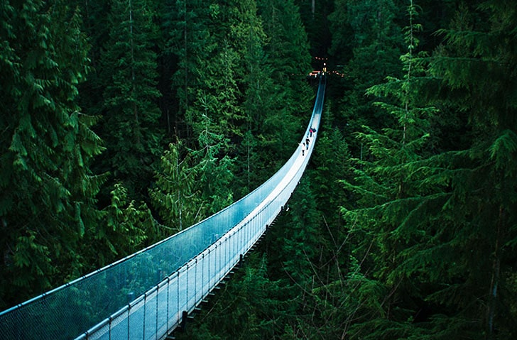 vancouver-capilano-suspension-bridge-secret-world