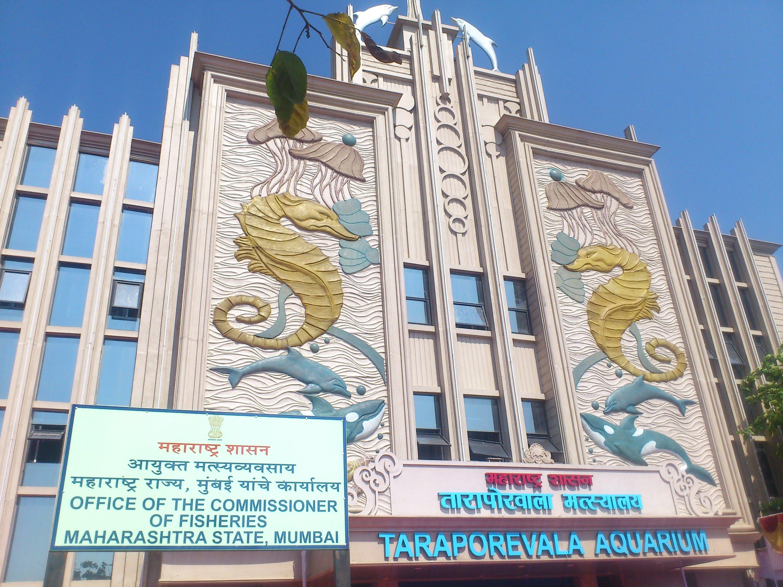 taraporewala-aquarium-secret-world