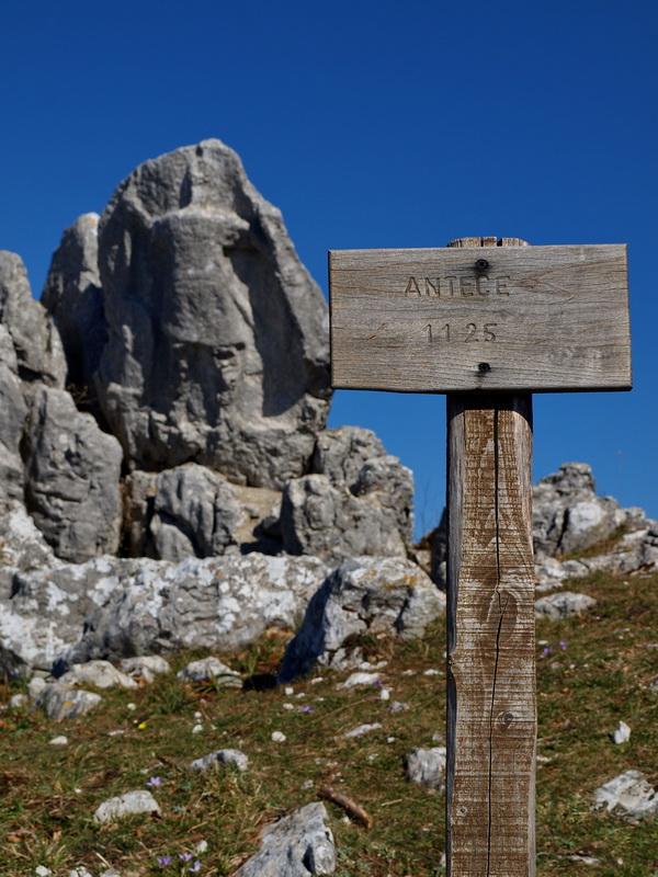 Antece  un guerriero di pietra vecchio 2500 anni