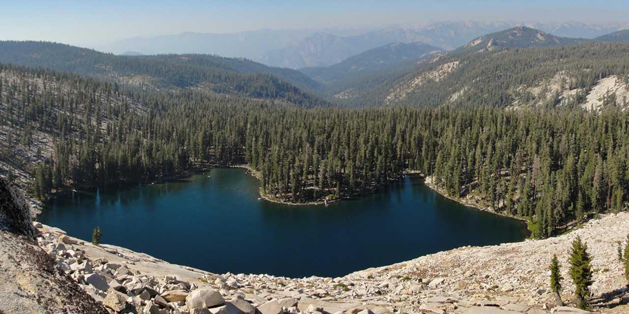 la-giant-forest-e-le-sequoie-giganti-secret-world