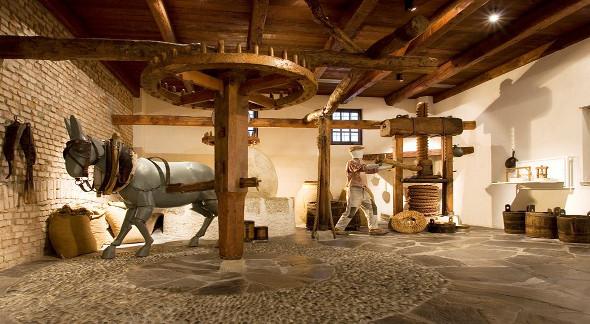 moo-museo-dellolivo-e-dellolio-nato-in-continuita-di-secret-world