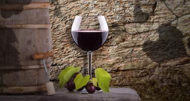 Grandi Vini della Campania: Aglianico del ... - Secret World